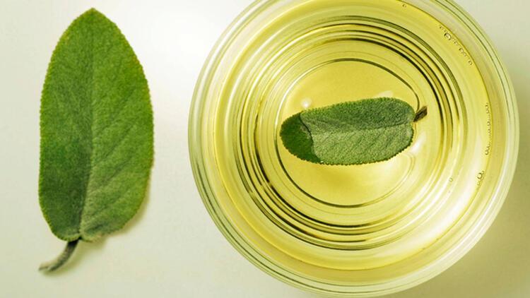 Yeşil çayın antioksidan içeriği yüksek, kafein miktarı daha az
