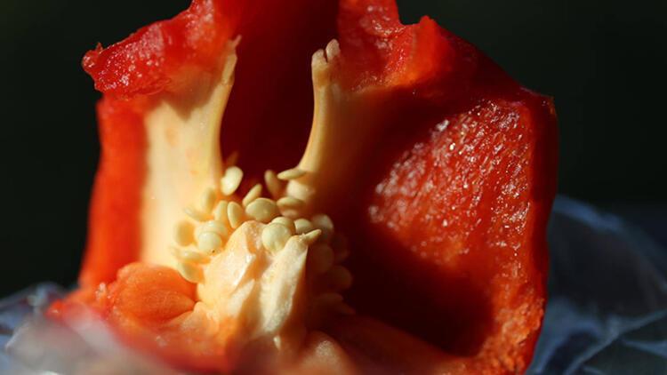 1.Kırmızı dolma biber