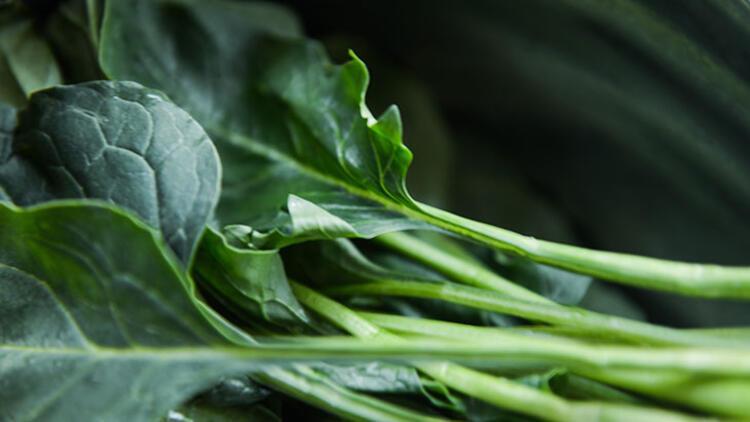 Koyu yeşil yapraklı sebzeler