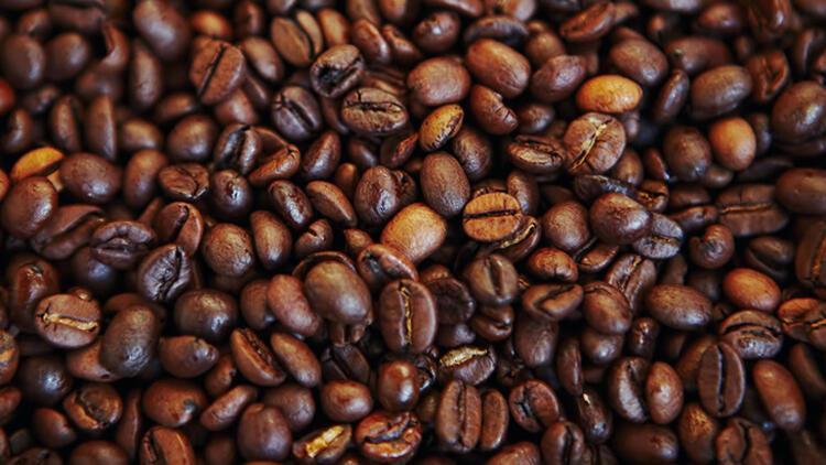 8.Kahve çekirdeği