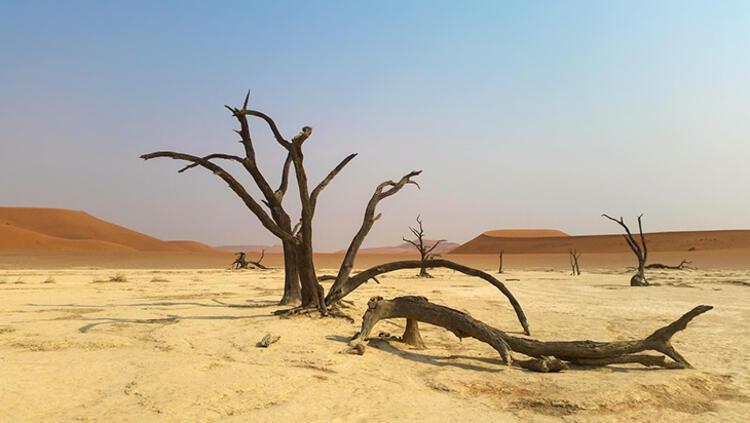 Namib Çölü, Namibya