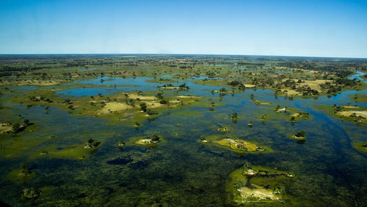 Okavango Deltası, Botswana