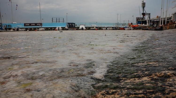 Kadıköy Kurbağlıdere ile sahilleri deniz salyası kapladı; ekipler temizlik çalışması yaptı 2 – 60be24e5adcdeb18b8036d04