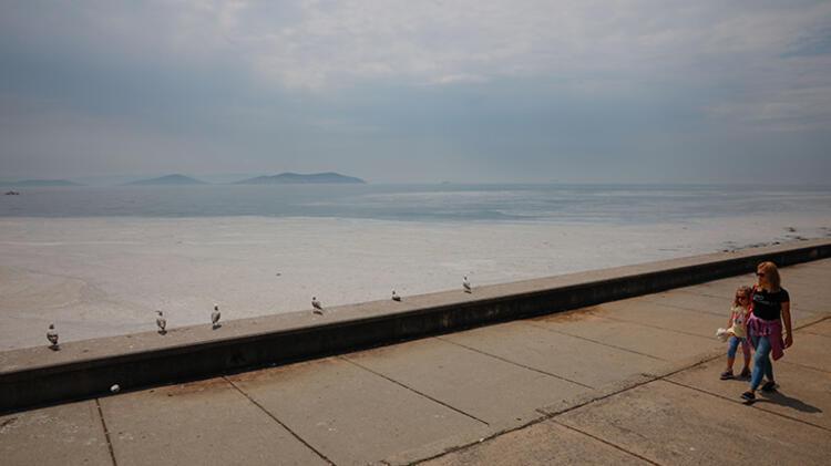 Kadıköy Kurbağlıdere ile sahilleri deniz salyası kapladı; ekipler temizlik çalışması yaptı 10 – 60be24f3adcdeb18b8036d0a