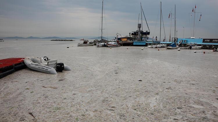 Kadıköy Kurbağlıdere ile sahilleri deniz salyası kapladı; ekipler temizlik çalışması yaptı 3 – 60be24f4adcdeb18b8036d0f