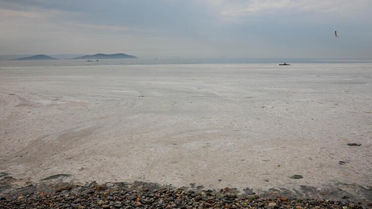 Kadıköy Kurbağlıdere ile sahilleri deniz salyası kapladı; ekipler temizlik çalışması yaptı 4 – 60be24f7adcdeb18b8036d12