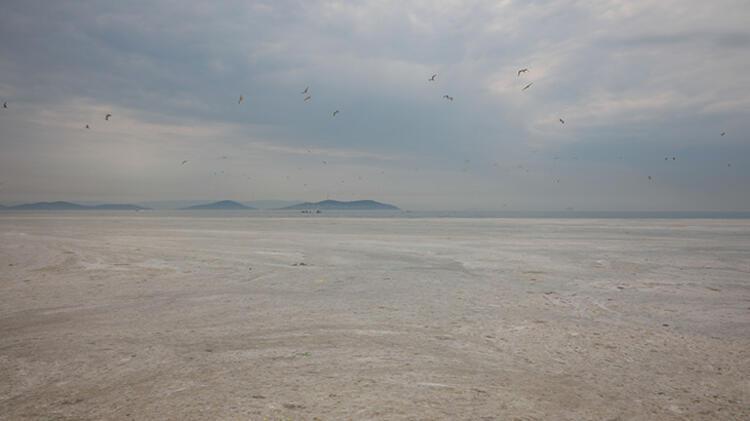 Kadıköy Kurbağlıdere ile sahilleri deniz salyası kapladı; ekipler temizlik çalışması yaptı 6 – 60be24f7adcdeb18b8036d14