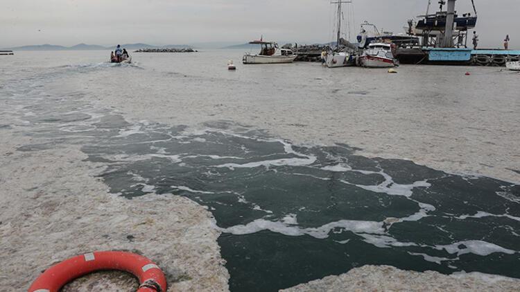 Kadıköy Kurbağlıdere ile sahilleri deniz salyası kapladı; ekipler temizlik çalışması yaptı 13 – 60be24feadcdeb18b8036d19