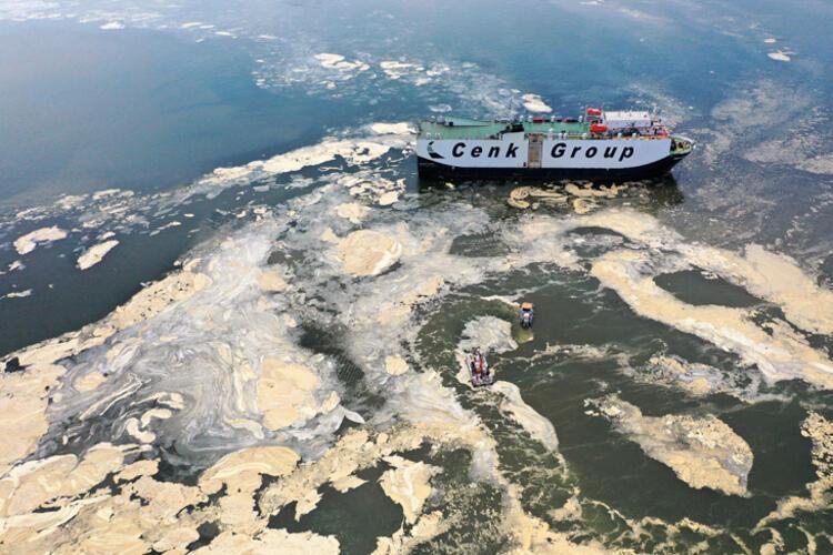 Son dakika haberi: Müsilaj nerelerde var? Hem Karadeniz'e hem de Ege'ye doğru ilerliyor 11 – 60bee87f55427f29404c117d