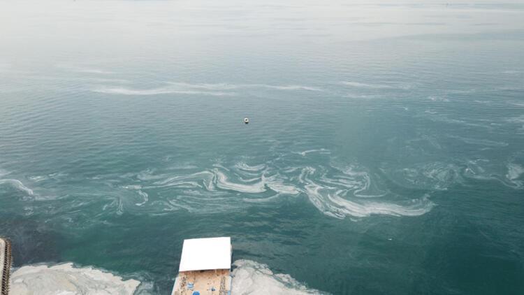 Son dakika haberi: Müsilaj nerelerde var? Hem Karadeniz'e hem de Ege'ye doğru ilerliyor 14 – 60bee87f55427f29404c1181