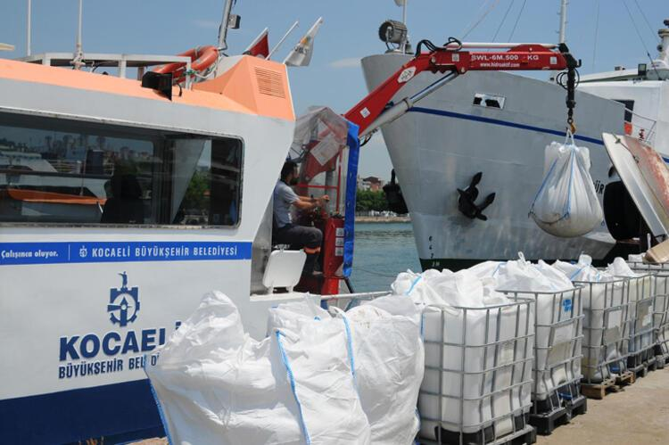 Son dakika haberi: Müsilaj nerelerde var? Hem Karadeniz'e hem de Ege'ye doğru ilerliyor 8 – 60bee87f55427f29404c1183