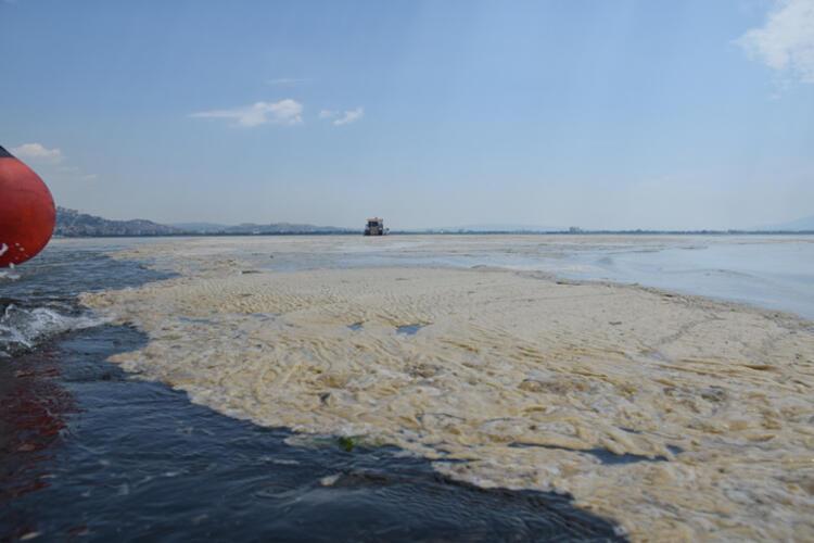 Son dakika haberi: Müsilaj nerelerde var? Hem Karadeniz'e hem de Ege'ye doğru ilerliyor 17 – 60bee88055427f29404c1187