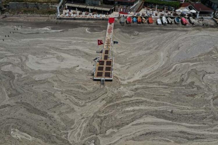 Suyun durgun olduğu noktalarından çıkarılan deniz ürünlerini  tüketmekten kaçınmak doğru olur