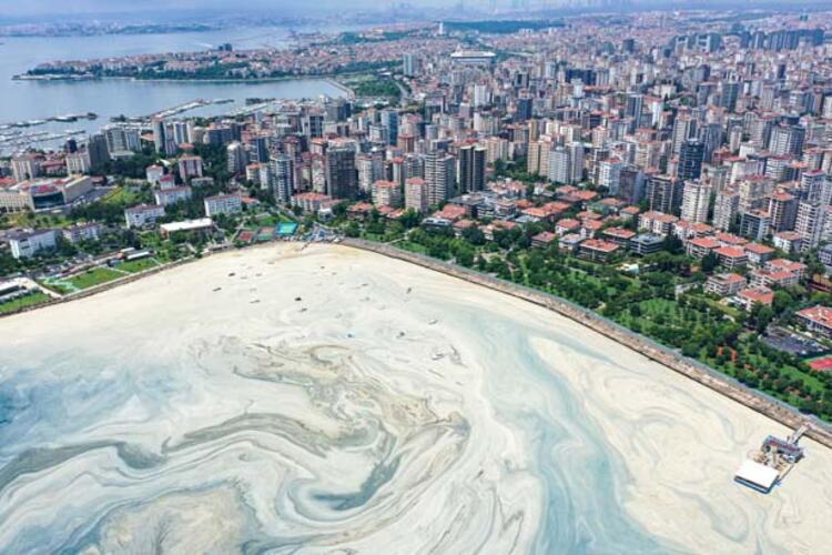 Caddebostan Sahili'nde müsilaj yoğunluğu arttı 2 – 60c8aae355428101f02f49c0