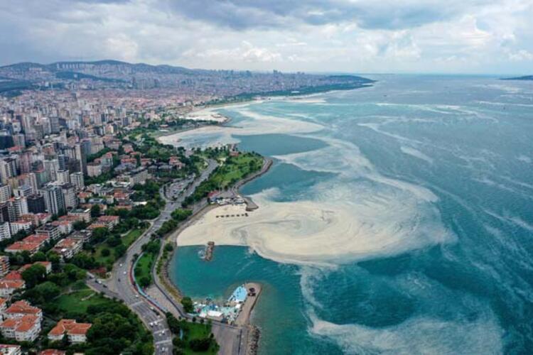 Caddebostan Sahili'nde müsilaj yoğunluğu arttı 8 – 60c8aae355428101f02f49c2