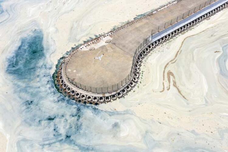 Caddebostan Sahili'nde müsilaj yoğunluğu arttı 4 – 60c8aae455428101f02f49c8