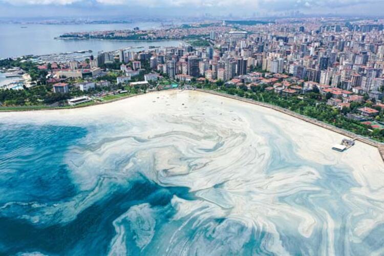Caddebostan Sahili'nde müsilaj yoğunluğu arttı 3 – 60c8aae455428101f02f49ca