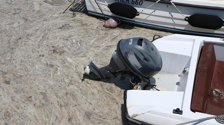 Tehdit yayılıyor! Çanakkale Boğazı'nın Ege çıkışında müsilaj görüldü
