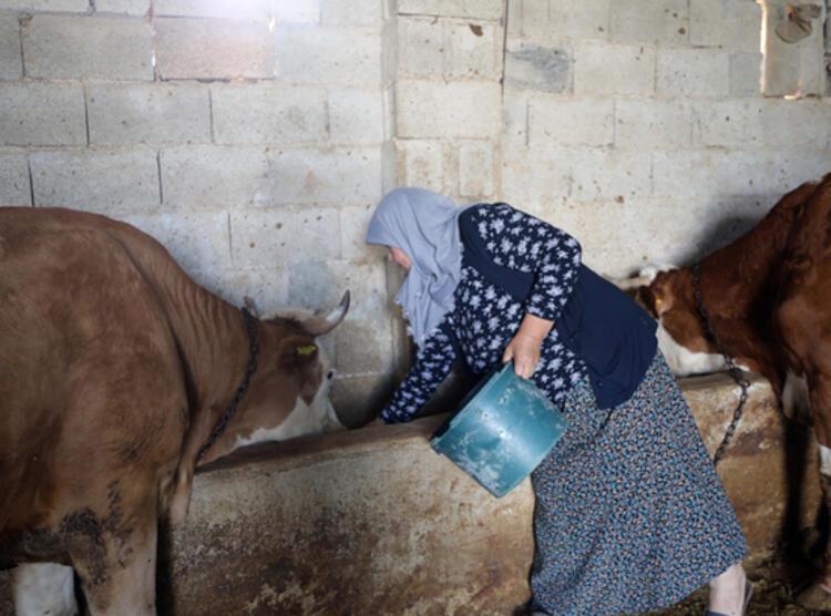 Gülçin Sakaroğlu'na devlet destek verdi! Eşinin yapamadığını kendisi tamamladı 4 – 60ebe49a86b247253083b811