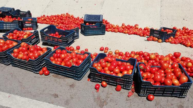 Kazada yola saçılan domatesleri polis topladı 3 – 60f2c4df86b244329c993d4c