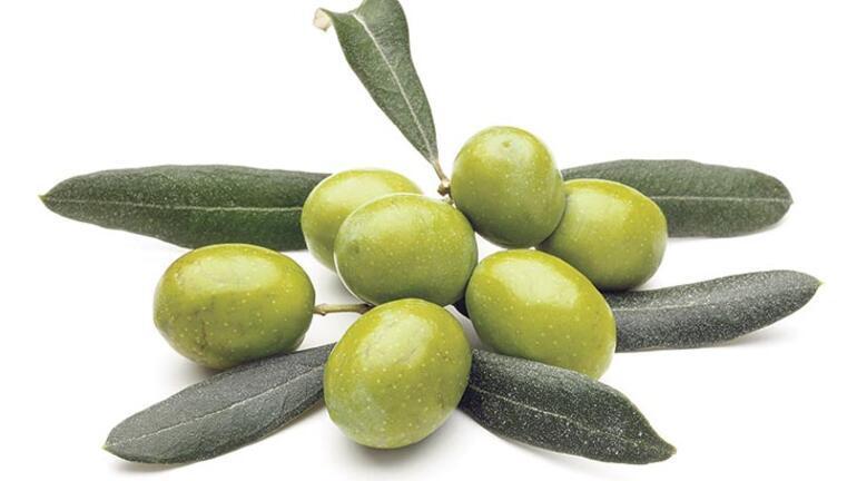 Şifalı zeytinyağı