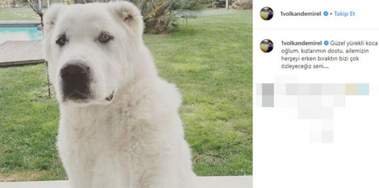 Volkan Demirelden köpeğine duygusal veda