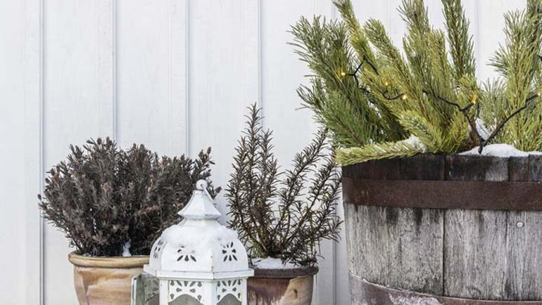Dairede oturanlar için kış bahçesi dekorasyonu nasıl yapılır