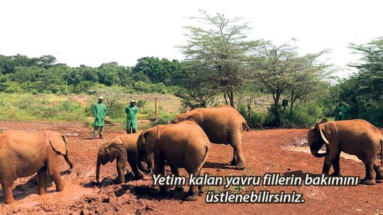 Çocukla Kenya turu
