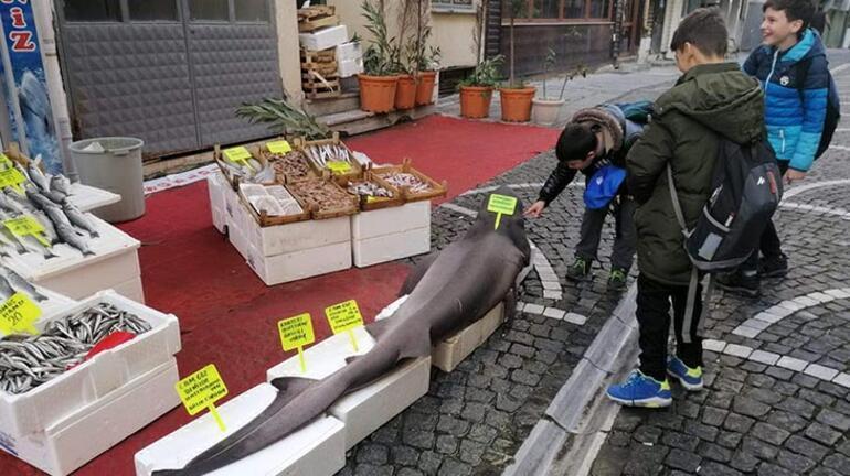 Marmarada yakalandı Tam 150 kilo