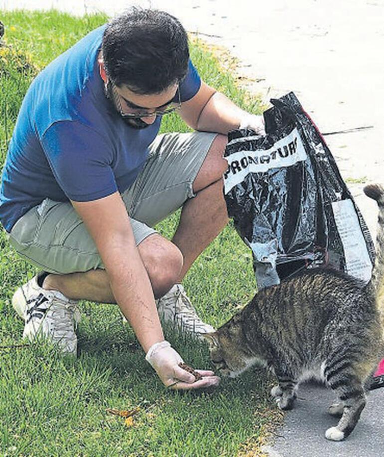 Yusuf Güney özel izinle kedileri besledi