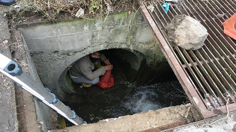 Su kanalına düşen kaz ve yavrularının yardımına koştular