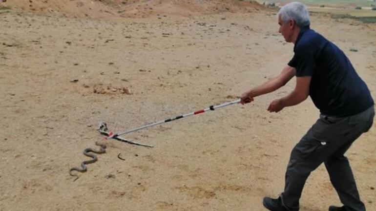 Kırıkkalede eve giren 2 metrelik yılan korkuttu