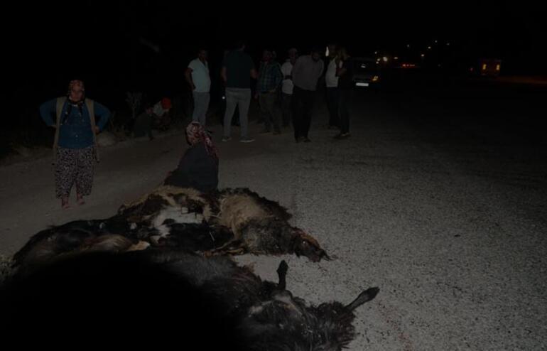 Otomobil keçi sürüsüne daldı: 1 yaralı, 22 keçi öldü