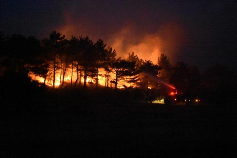 Geliboluda orman yangını 19 saatte kontrol altına alındı, 450 hektar alan yandı