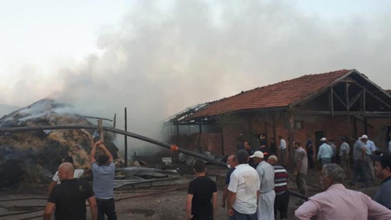 Çiftlikte korkutan yangın 5 bin saman balyası kül oldu
