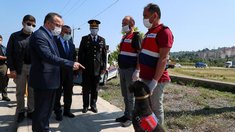 İçişleri Bakan Yardımcısı Çataklı: Trafikte can kayıplarında azalma oldu