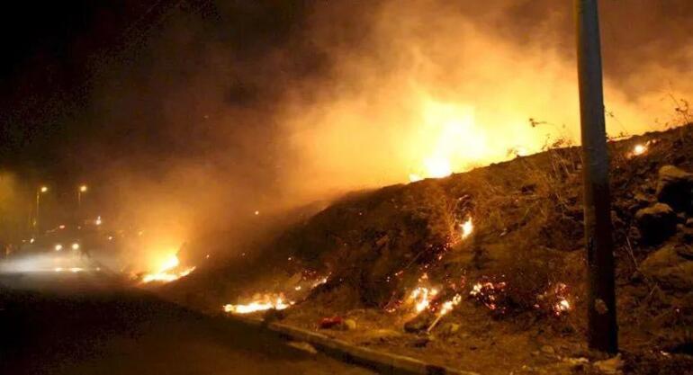 Tatil cennetinde korkutan yangın 1 saat sonra kontrol altına alındı