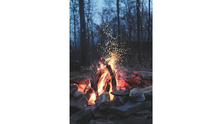 Orman yangını neden çıkar, ormanları nasıl koruruz