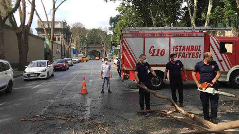 Çırağan Caddesinde asırlık ağacın kırılan dalı taksi durağının üzerine düştü