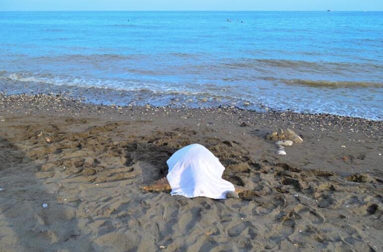 Mersinde ölü caretta caretta bulundu
