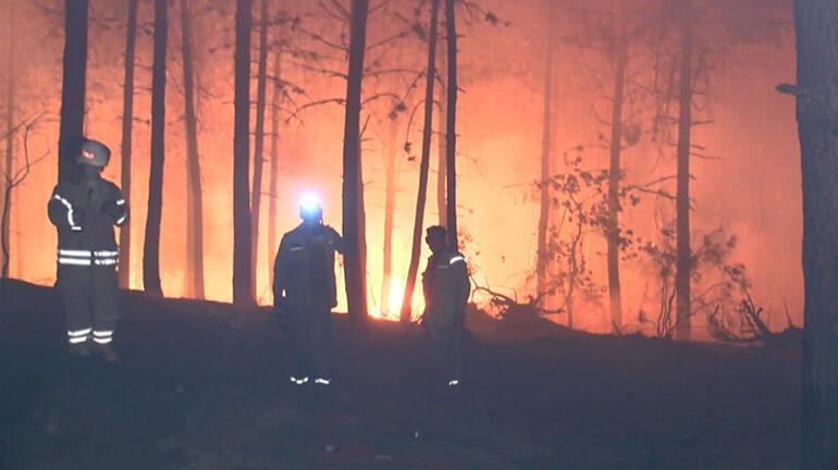 Pendik'te ormanlık alanda yangın Kısmen kontrol altına alındı