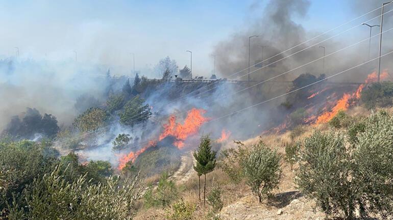 Orman yangını yerleşim yerlerine sıçradı Kabus görüntüler