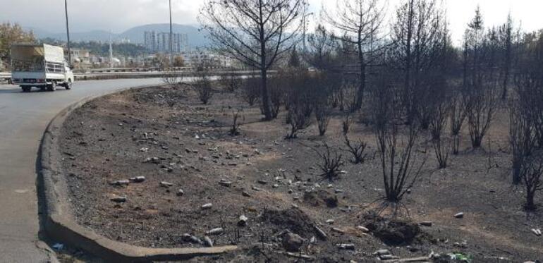 Hataydaki yangın bölgesi yakınında Ne varsa yansın yazısı