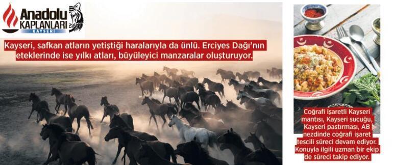 Orta Anadolu Sanayi Havzası'nı kuralım