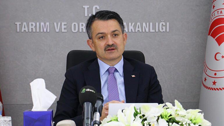 Son dakika... Bakan Pakdemirliden İstanbul ve Ankara açıklaması