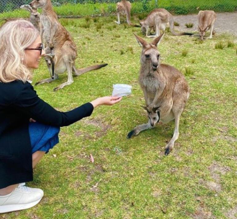 Zerrin Tekindor elleriyle kanguru besledi