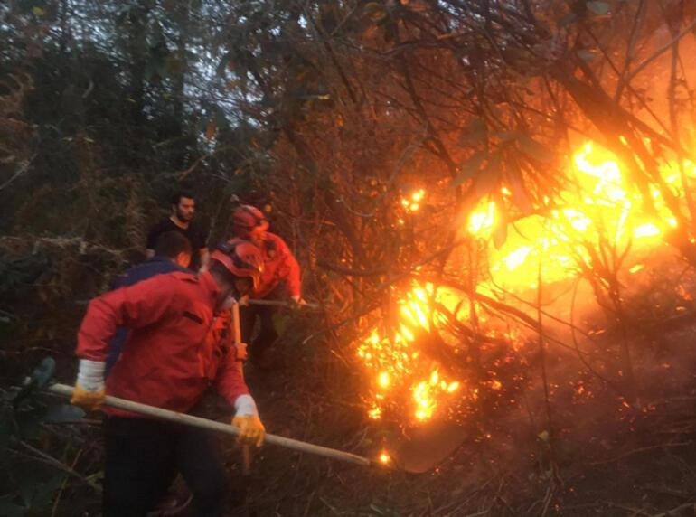 4 ilde 23 noktada yangın Ekipler müdahale ediyor