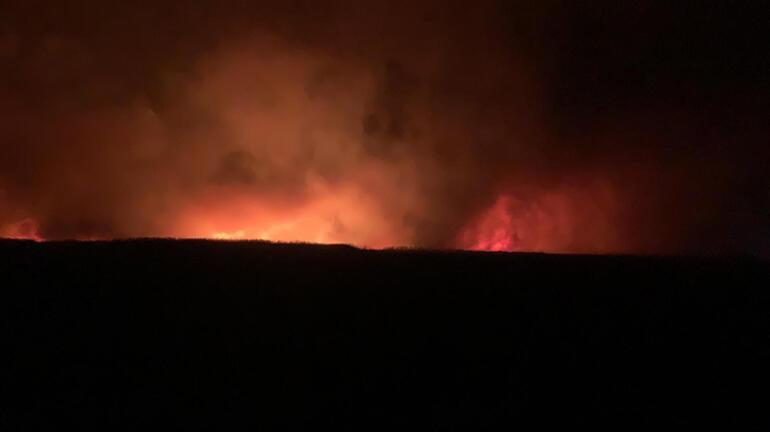 Eber Gölünde korkutan yangın 8 bin dekar kamışlık alan zarar gördü