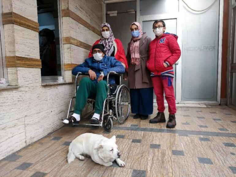 Son dakika! Sahibi tedavi gören köpek, 5 gündür hastane kapısında bekliyor  - Güncel Haberler Milliyet