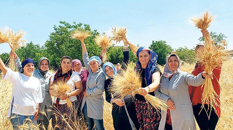 Mardin'de yeni bir Ebru Baybara Demir imzası